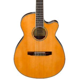 Ibanez AEG10NII Nylon String Cutaway Acoustic-Electric Guitar Tangerine