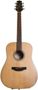 Takamine GD20-NS Fingerstyle Guitar