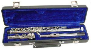 Hisonic Signature Series 2810N Flute